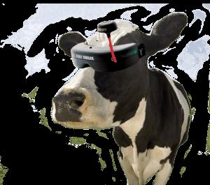 vaca-fpv